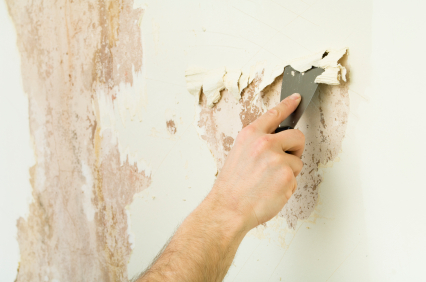 Popcorn And Wallpaper Removal
